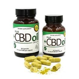 PlusCBDoil capsules buy online