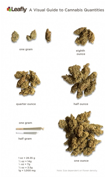 From Grams To Ounces And Pounds Of Weed Measurements