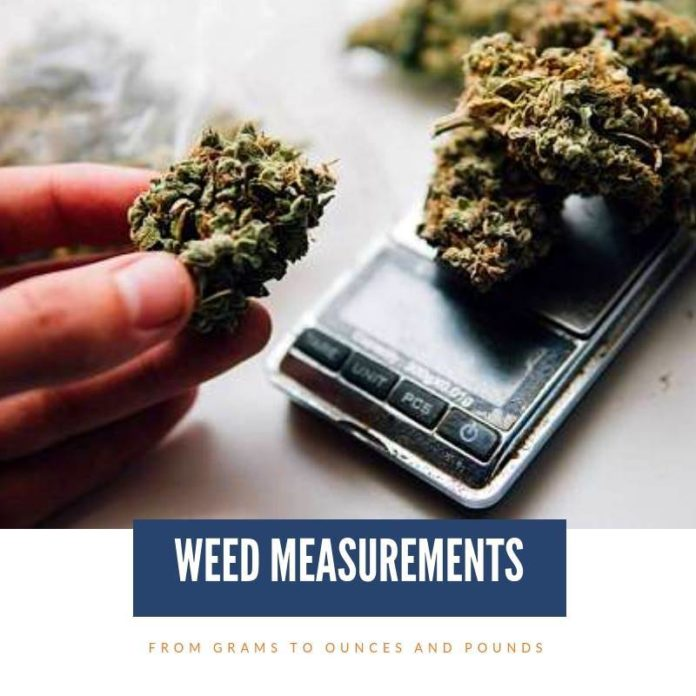 weed measurements