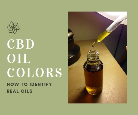 How To Identify CBD Oil Colors? (Cannabis to Hemp)