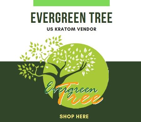 Evergreen Tree Kratom