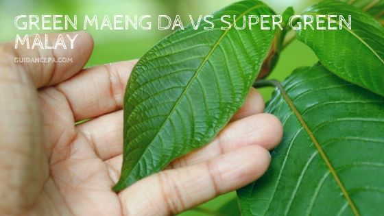 green maeng da vs super green malay