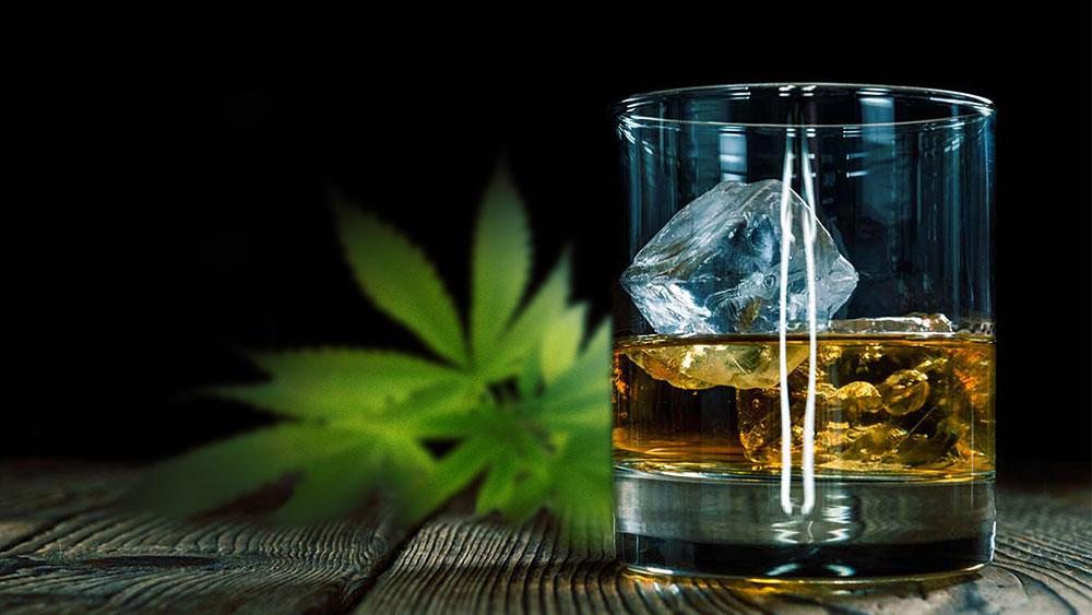 CBD and Drinking