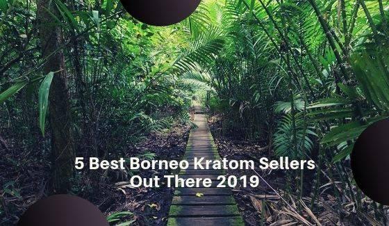 Borneo Kratom Vendors