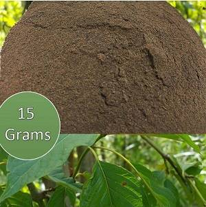 Kratom Extracts at Authentic Kratom