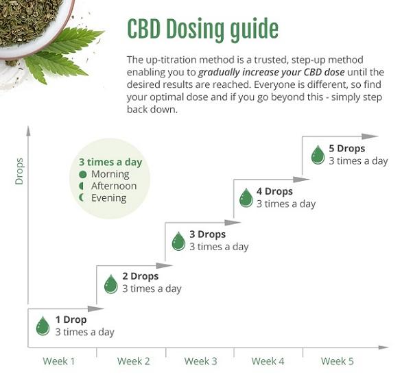 CBD dosing guide