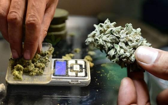 A Zip Of Weed