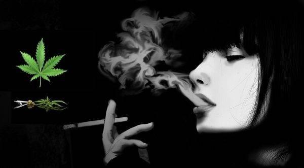 CBD Cigarette