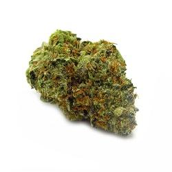 Candyland Bud