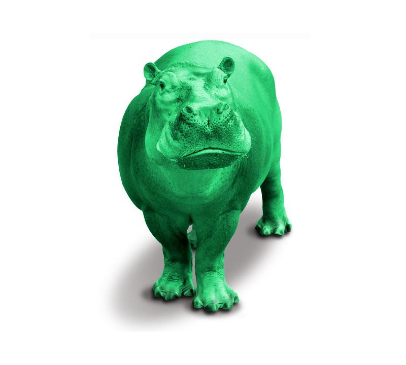 Green Hippo Kratom