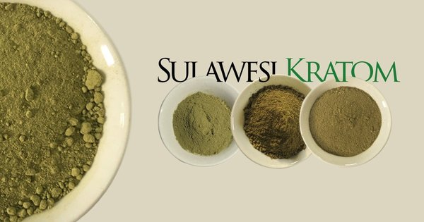 Kratom Sulawesi